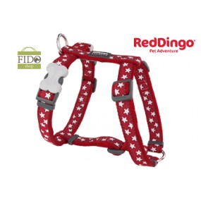 RED DINGO PETTORINA H REGISTRABILE COLLO E CORPO DESIGN STAR RED