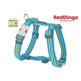 RED DINGO PETTORINA H REGISTRABILE COLLO E CORPO DESIGN DREAMSTREAM TURQUOISE