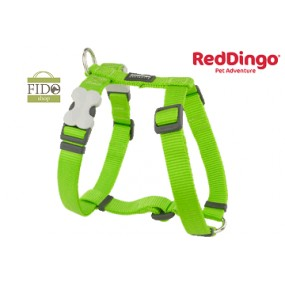 RED DINGO PETTORINA H REGISTRABILE COLLO E CORPO DESIGN CLASSIC LIME GREEN