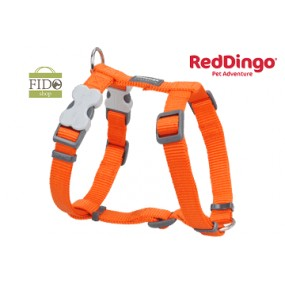 RED DINGO PETTORINA H REGISTRABILE COLLO E CORPO DESIGN CLASSIC ORANGE