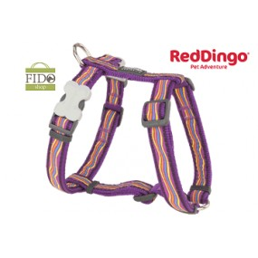 RED DINGO PETTORINA H REGISTRABILE COLLO E CORPO DESIGN DREAMSTREAM PURPLE
