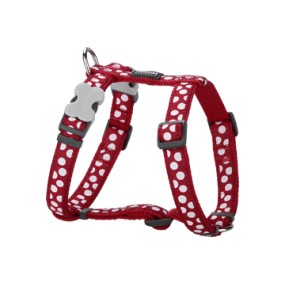 RED DINGO PETTORINA H REGISTRABILE COLLO E CORPO DESIGN WHITE SPOTS RED